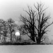 Winter im Luch bei Leegebruch (Foto: Hajo Eckert)